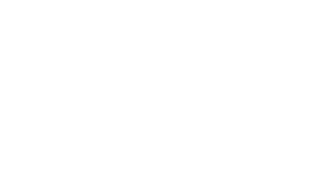 Disability Rights Fund logo